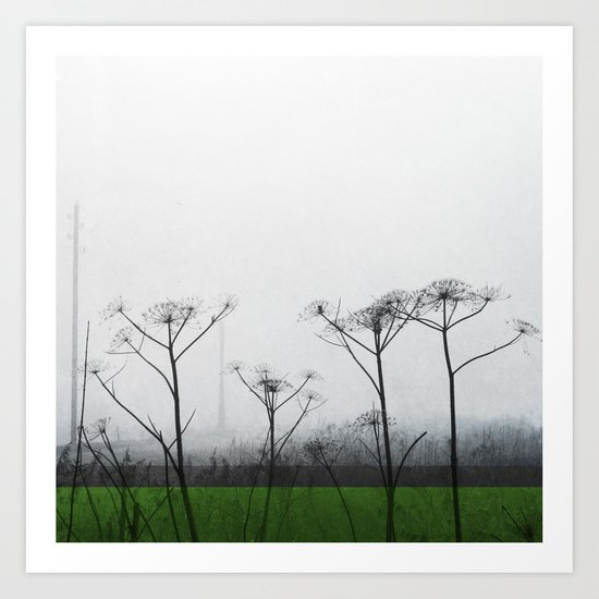 Fields #2 Art Print