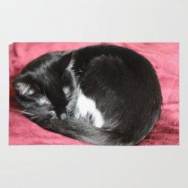 Kitty nap time. Rug
