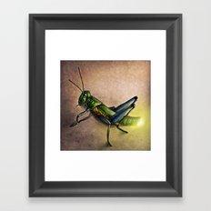 The Firefly and the Grasshopper Framed Art Print