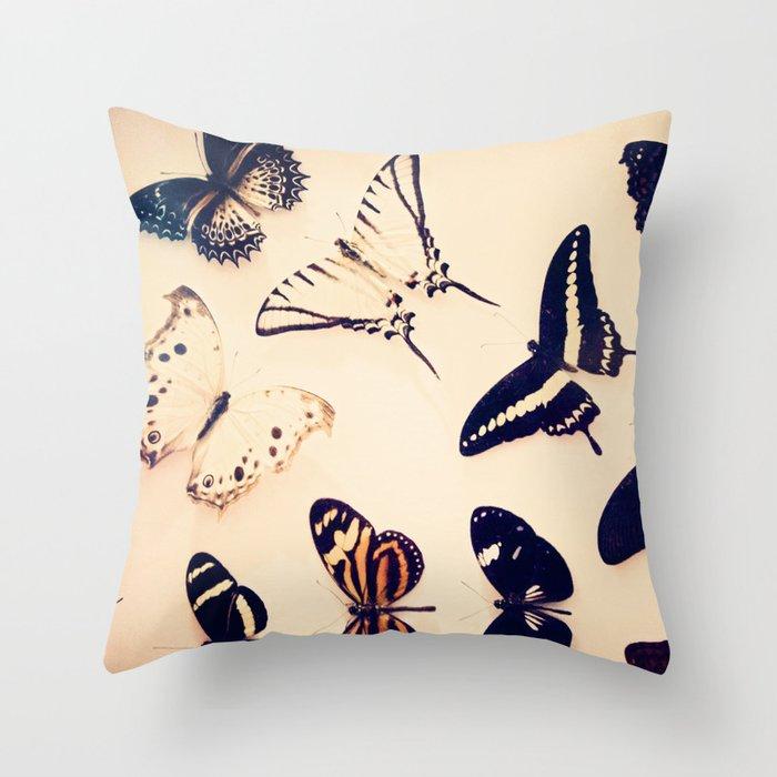 Butterfly Study Throw Pillow