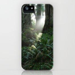 WestCoast Rainforest iPhone Case