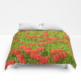 tulips field Comforters