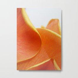 Petals 2 Metal Print