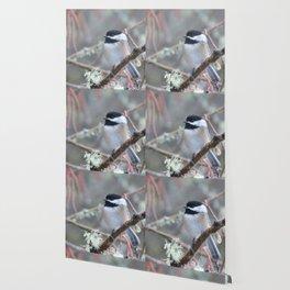 Chickadee in the Alder Tree Wallpaper