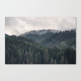 Pacific Northwest Forest - Nature Photography Canvas Print