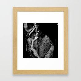leaves of the river  Framed Art Print