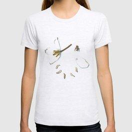 Diaphanous  T-shirt