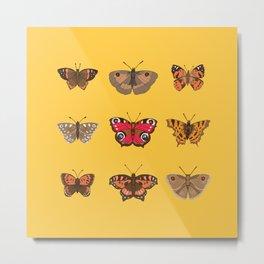 Butterflies Mounted on Yellow Metal Print