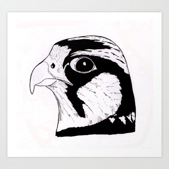Falcon Face Art Print