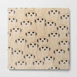 Meerkats Kalahari Desert Metal Print