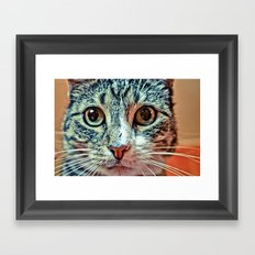 PRETTY KITTY Framed Art Print