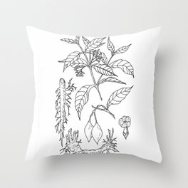 tabernanthe iboga Throw Pillow