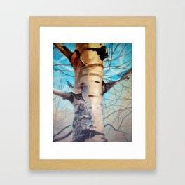 Bark of the Aspen Framed Art Print