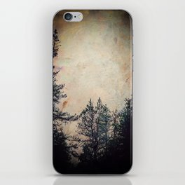 Winter Wanderings iPhone Skin