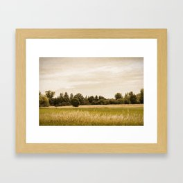 Field with Trees Framed Art Print