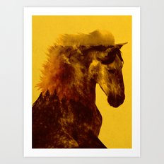 Proud Stallion Art Print