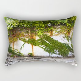 Impermanence #2  Rectangular Pillow