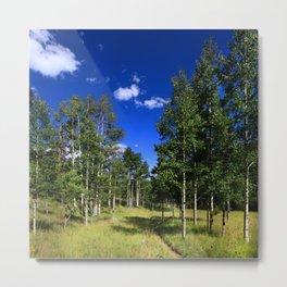 Watercolor Landscape, Lost Creek Wilderness 09, Colorado Metal Print