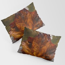 Leaf on the Road Pillow Sham