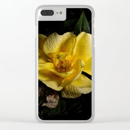 Yellow rose on black -2 Clear iPhone Case