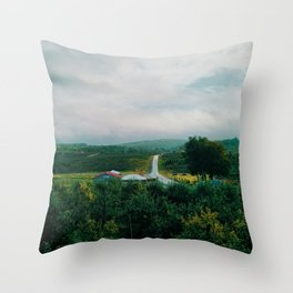 Orchard View Throw Pillow