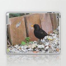 Beautiful Bird Laptop & iPad Skin