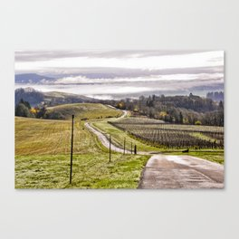 Road in the vineyards Canvas Print