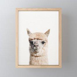 Baby Alpaca, Baby Animals Art Print By Synplus Framed Mini Art Print