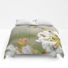 Bee laid on white flowers of a cherry tree Comforters