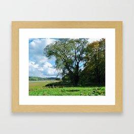 Lake Shoreline. Framed Art Print
