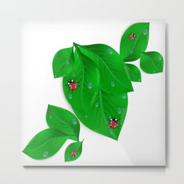 Green leaves with ladybirds and waterdrops Metal Print