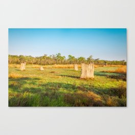 Magnetic termite Mounds in Litchfield National Park Canvas Print