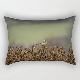 Blue Tit. Rectangular Pillow