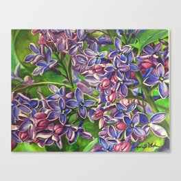 His Wife's Lilacs Canvas Print