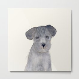 little schnauzer Metal Print