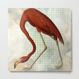 Vintage Flamingo on Green check background. Metal Print