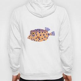 Box Fish Hoody