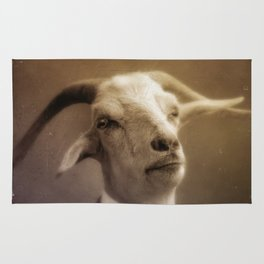 The Goat Rug