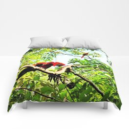 Endangered Trio of Scarlet Macaws Comforters