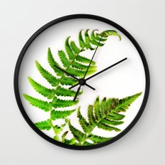 Fern on white Wall Clock