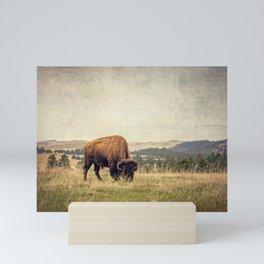 Bison Land Mini Art Print