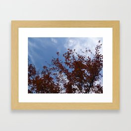 Some of the Leaves, More of the Sky Framed Art Print