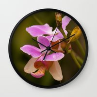 orchid Wall Clocks featuring Orchid by Julio O. Herrmann