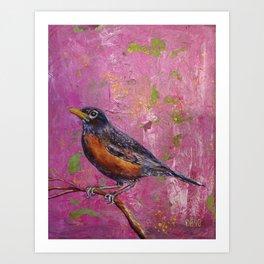 American Robin #4 Art Print
