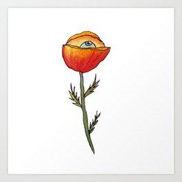 All Seeing Poppy Flower Art Print