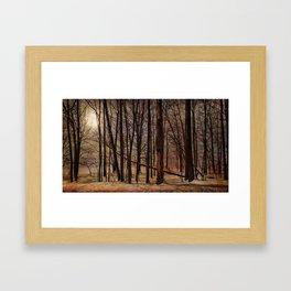 To My Tree Framed Art Print