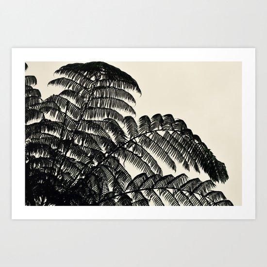 Palm Fan Art Print