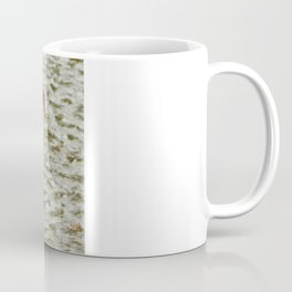"""Where's the pond?"" - Frozen pond confuses the ducks Coffee Mug"