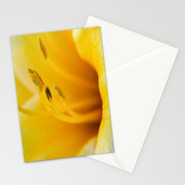 Day Lily Close up-4 Stationery Cards