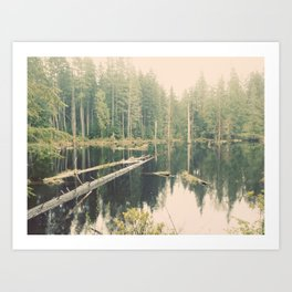 Mystical Pond Forest Redmond Washington, Original Fine Art Photography Architecture Home Decor Gift Art Print